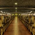 cave a vin bordeaux