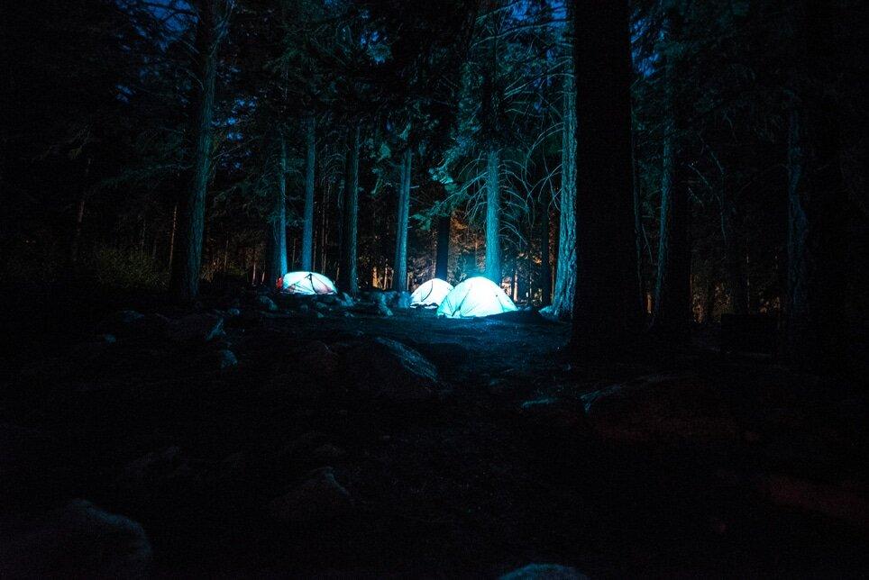 Un team building original avec une nuit en forêt. De quoi resserrer les équipes !
