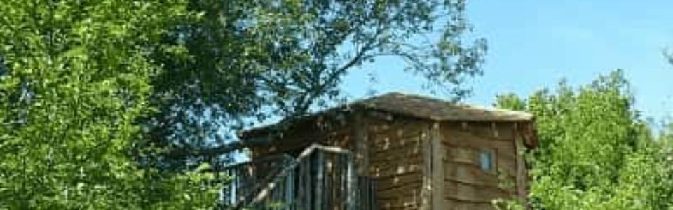 Cabane_dans_les_arbres_Centre_Loiret