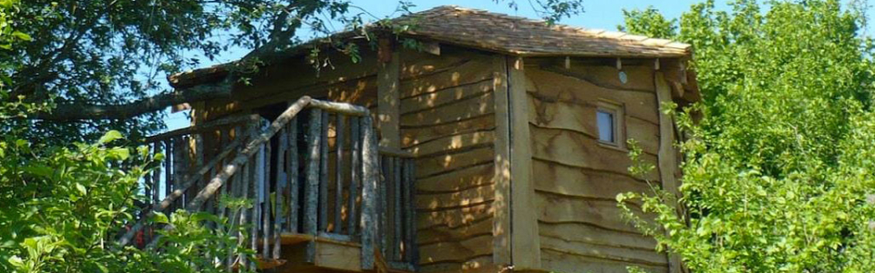 camping-Family-Ecolodge-1000603-965311