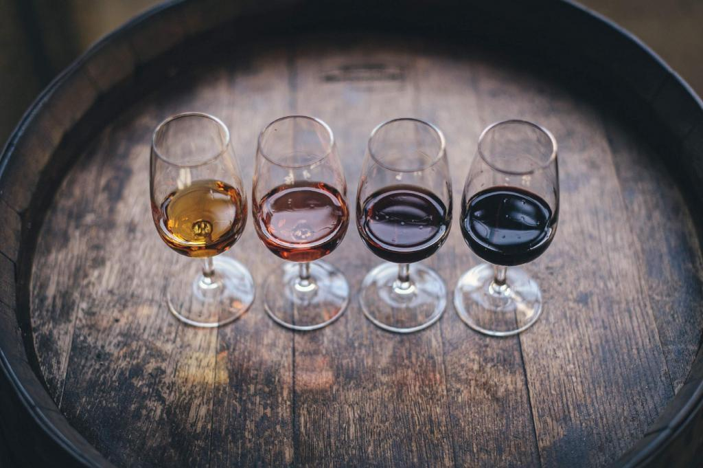webinaire vin